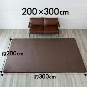 ラグマット低反発マイクロファイバーラグ[200cmx250cm]あす楽対応北欧CARPETcarpetじゅうたん玄関リビング