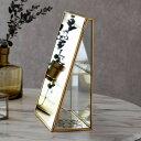 ジュエリーケース アクセサリー ジュエリー 収納 ガラス 真鍮 ミラー ゴールド 金 クリア 約 W 17cm D 9cm H 23.5cm […
