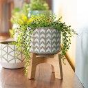 植木鉢 鉢カバー 直径13cm 陶器 テラコッタ [98915]【 ポット 木製スタンド ガーデン雑貨 インテリア グレー ホワイト…