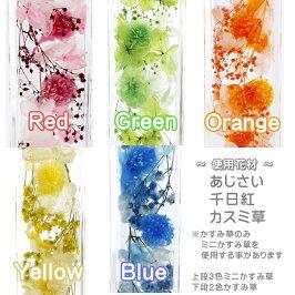 ハーバリウム☆immortality、花材カラー種類