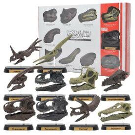 恐竜のフィギュア 模型 インテリア 玩具!ダイナソースカルミニモデルセット FDW-570 (73570)
