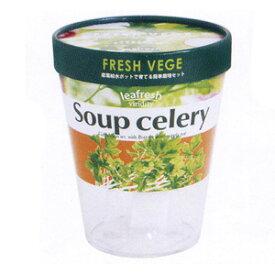 水やり簡単 ミニ菜園 栽培キット 水耕栽培!野菜の栽培セット フレッシュベジ スープセロリ