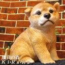 犬の置物 柴犬 秋田犬 お座りBタイプ 日本犬 ワンちゃん いぬ オブジェ リアル ドッグ モチーフ 毛並み こだわり オー…