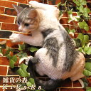 猫 置物 大きくてリアルな猫の置物 キャット 伏せ Aタイプ ホワイト&グレー 壁掛けタイプにもなります。動物オ…