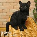 猫 置物 リアル 黒猫 クロネコ くろねこ キャット リアルな猫の置物 お座りキャット ブラック 動物オブジェ…