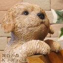 犬の置物 プードル ぶらさがりドッグ ワンちゃん いぬ オブジェ リアル ドッグ モチーフ 毛並み こだわり オーナメン…