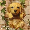 犬の置物 ゴールデンレトリバー ブランコドッグ Aタイプ ワンちゃん いぬ オブジェ リアル ドッグ モチーフ 毛並み こ…