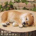 犬の置物 柴犬 お昼寝中!Bタイプ 日本犬 しばけん ワンちゃん いぬ オブジェ リアル ドッグ モチーフ 毛並み こだわ…