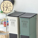 ゴミ箱 プッシュダスト(浅型) 17L ごみ箱 ダストボックス 分別 キッチン ふた付き フタ付き 蓋付き