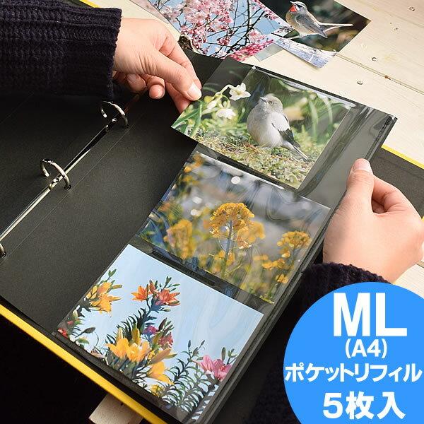 【ポイント10倍】アルバム ポケット台紙 リフィル【ポケットA4】 PDフォトアルバム DELFONICS デルフォニクス