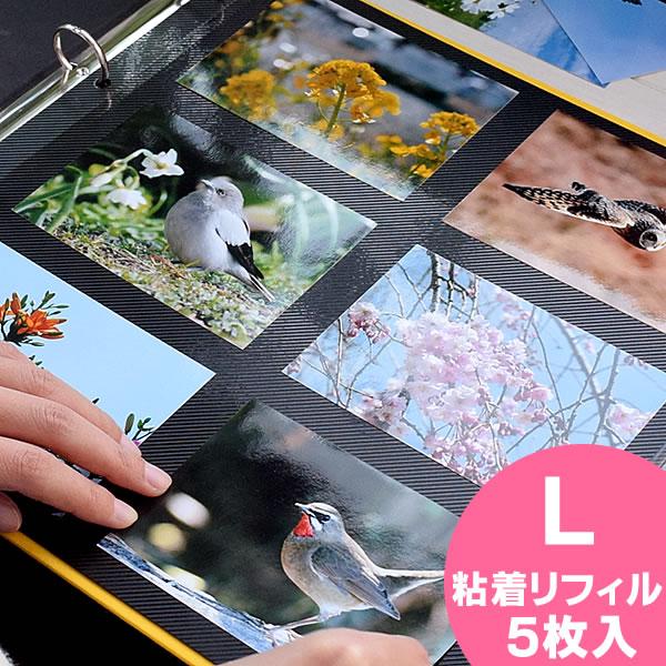 【ポイント10倍】アルバム 粘着台紙 リフィル【粘着L】 PDフォトアルバム DELFONICS デルフォニクス