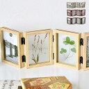 リンキングフレーム フォトフレーム 置き型 L版 ×8枚 写真立て おしゃれ 複数 木製 押し花 折りたたみ 両面 ギフト プレゼント 北欧 木目