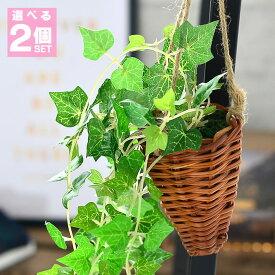 選べる 2個セット フェイクグリーン 光触媒 壁掛け ハンギング 観葉植物 フェイク 消臭 抗菌 アイビー ポトス クレマチス イミテーショングリーン グリーン 人工観葉植物 人工 造花 おしゃれ インテリア