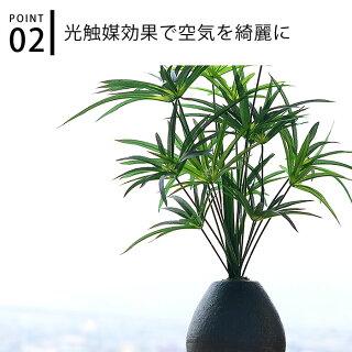 フェイクグリーンサイプレスL鉢陶器55cm観葉植物光触媒消臭抗菌サイプレスフェイク人工観葉植物人工イミテーショングリーン造花鉢植グリーンおしゃれインテリア