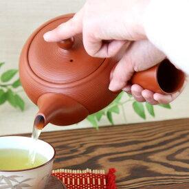 【1個】常滑焼ビッグな朱泥急須1個 常滑焼 日本製 急須 新茶 お茶 ティー 緑茶 煎茶 ほうじ茶 玄米茶 茶こし一体型 550ml 湯呑2〜3杯分 朱泥
