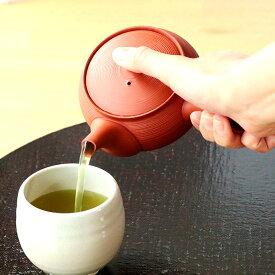 【1個】常滑焼玉光作茶っ切り急須 日本製 常滑焼 340ml 湯呑1〜2杯分 茶 緑茶 陶製茶こし 茶こし一体型 お茶が注ぎやすい 玉光 玉光作 急須 オシャレ 和風 プレゼント ささめ セラメッシュ 贈り物 ギフト こだわり