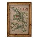 オールドルック フレームポスター ボタニカル B ポスターフレーム 壁掛け 木製 額縁 フレーム アンティーク