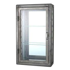 【送料無料】WALL MOUNT GLASS CABINET REC RAW ダルトン キャビネット ガラス アンティーク スチール 壁面収納 壁掛け 収納