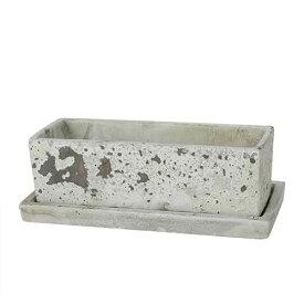 SOLID PLANTER RECTANGLE L R.GRAY ダルトン プランター 長方形 おしゃれ コンクリート 鉢 植木鉢