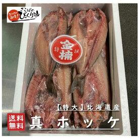 北海道産【特大】真ほっけ 20枚 【ざこばのびっくり市】 BBQ 高級魚 高級干物 お値打ち 業務用