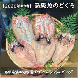 どんちっちのどぐろ 開き 【大サイズ】 5尾  白身のトロ 高級魚 あかむつ ノドグロ 高級干物 ひもの 贈り物 プレゼント 魚 ギフト