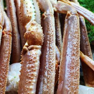 最高級 船凍品生ずわいがにオピリオ種4Lかに カニ 蟹 ずわい ズワイガニ ズワイ かに鍋 カニ鍋 冷凍 送料無料 生ズワイ 新鮮 鮮度 美味しいかに 年末年始 お正月 蟹パーティ ホ