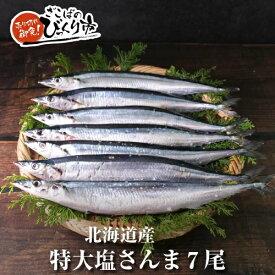 北海道産【特大】塩さんま7尾