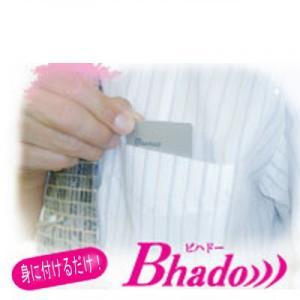 【Bhado)))携帯ポケット】