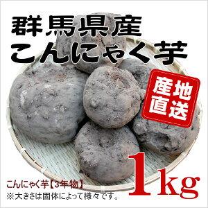 【群馬県産】★手作りこんにゃく用★こんにゃく生芋1kg