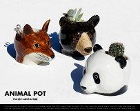 ANIMALPOT/アニマルポットインストゥルメンタルEGGCUPエッグカップエッグスタンド小物入れタマゴ置き動物