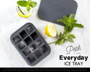 """Peak Ice Works """"Everyday ice tray"""" ピークアイスワークス """"エブリデイアイストレイ"""" W&P Design 製氷 氷 カクテル..."""