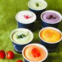【アイスクリーム ギフト】とれたて野菜と果実の生ジェラート(6個)【内祝 お礼 お祝 誕生日祝い】