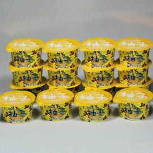 【送料無料】香りゆたかな柚子たっぷり 高知県産柚子ソルベ 16個入 さっぱり 氷菓 シャーベット ゆず 贈答