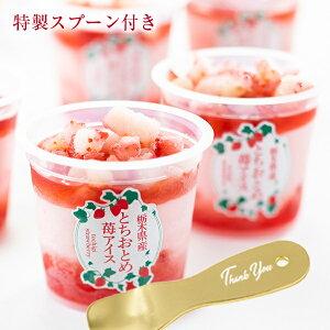 送料無料 とろけるスプーン付き 栃木県産とちおとめ苺アイス 6個 アイスクリーム パフェ ギフト いちご イチゴ スイーツ 内祝 誕生日 遅れてごめんね母の日 父の日