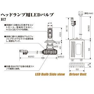 BELLOF(ベロフ)バイク用LEDヘッドライトバルブフォース・レイH7DAYTONA(デイトナ)