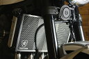 Z900RS(18年)ラジエターコアガードステンレスシルバーTRICKSTAR(トリックスター)