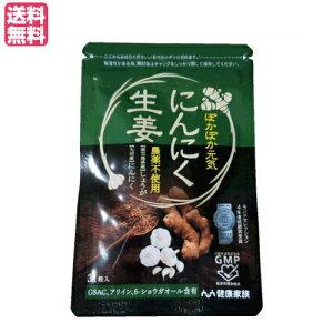 健康家族 にんにく生姜 31粒入 にんにく サプリ ショウガオール