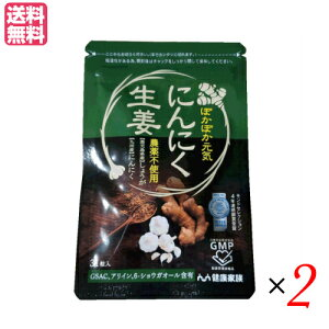 【ポイント5倍】最大27倍!健康家族 にんにく生姜 31粒入 2袋セット にんにく サプリ ショウガオール