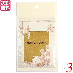【ポイント2倍】井上スパイス 特選カレーパウダー 20g 3袋セット カレー カレー粉 スパイス 送料無料