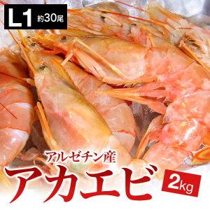 =【赤海老刺身用特大サイズ】=業務用/アルゼンチン赤エビ 特大 L1サイズ(約30尾)2kg生食用/アカエビ/大海老