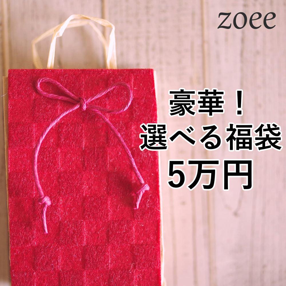 【返品交換不可】選べる福袋チケット アウター2点とバッグが入って5万円 lg5