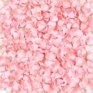 【花びら】桜の花びら(1000枚) T0193(1枚1枚が染め分けされた花びら)