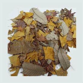 [最短発送]ドライ製枯葉 azuma【自然素材 枯葉】約100グラム入雑木ミックス 大地農園 50810-000