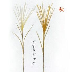【秋 すすき】長さ約45cm すすきショートピック(穂長さ約18cm)G7473
