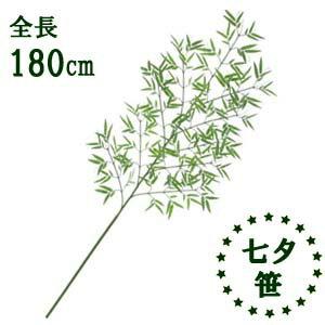 【全長180cm七夕笹】10本枝 七夕用笹*LET-0221-L