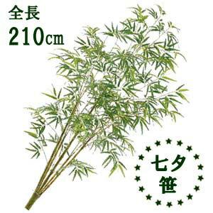 【七夕笹 造花】分割式 全長210cm バンブーツリー(M) 容器別売 BT-0110-M お取寄せ商品
