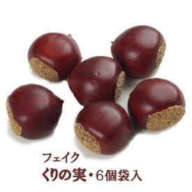 【秋の実物】栗の実 6個(実径約4×4×厚み2.5cm)T0227[取寄せ可能]*