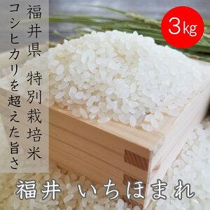 【白米】いちほまれ 3kg 送料無料 福井県産